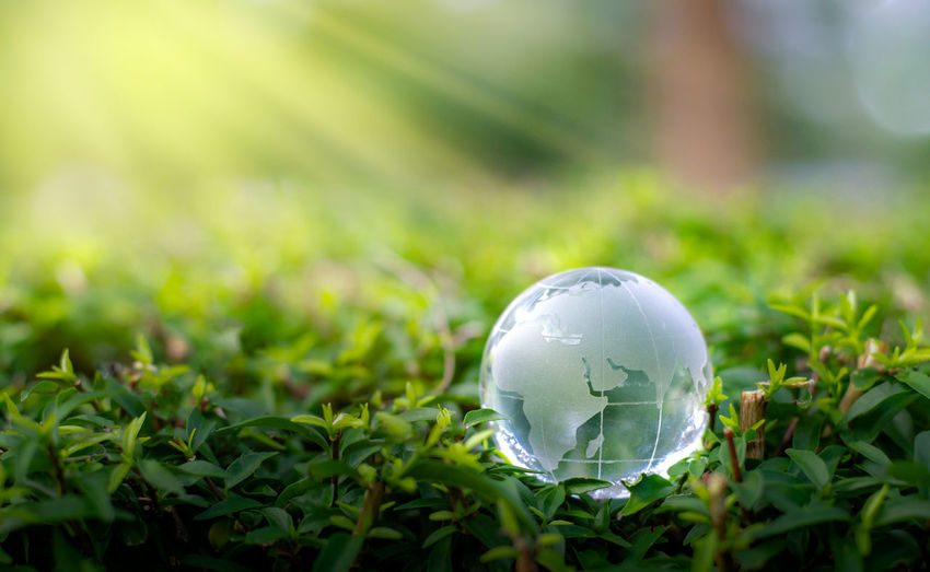 Close-up of crystal ball on grassy field