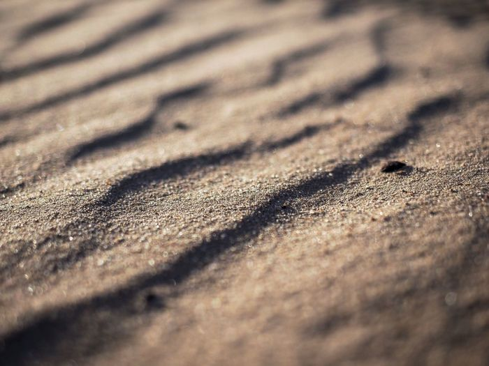 Shadows in the sand Sand Land Sunlight Selective Focus Beach Day Nature No People Pattern Shadow Full Frame Close-up Backgrounds Textured  Outdoors High Angle View Sand Dune Field Natural Pattern Tranquility