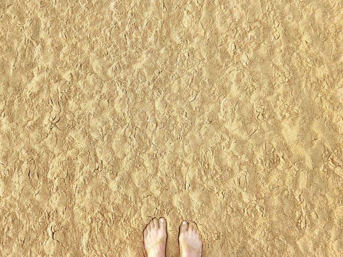 | Gold | Sand Dune Golden Hour Bibione Pineda EyeEmItaly Low Section Beach Standing Sand Human Leg Directly Above barefoot Human Foot High Angle View Human Feet Personal Perspective