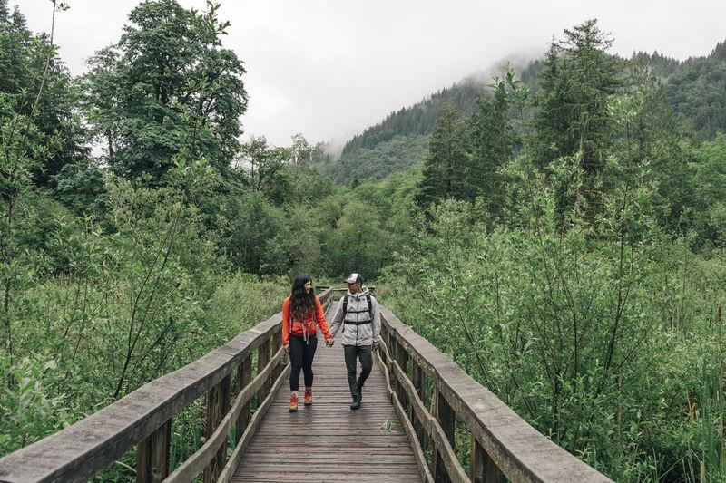 Rear view of people walking on footbridge in forest