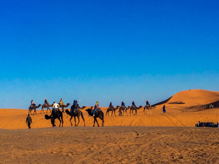 People riding horse in desert against sky