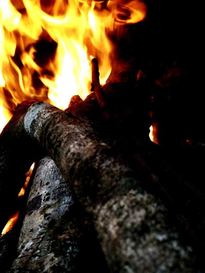something hot ... Fire And Flames Fire ! Fire Pit Firepit Fireworksphotography Fire - Natural Phenomenon Firewood Flames Burning Flameshot Flames & Fire Burning Wood Burnt Wood Burning Woodburning Stove Woodburning Bonfire🔥 Bonfire Firepits Maximum Closeness