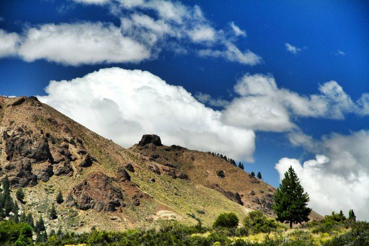 EyeEm Selects Tree Mountain Blue Sky Cloud - Sky Landscape Cumulus Calm Green Cloud Mountain Range Mid Distance