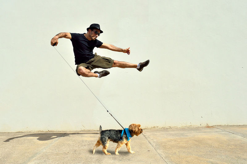 Flying Kick Series: Flying Kick 'walking' the dog Action Activity Adult Flying Kick Isolated Jumping Man Model Motion Moving Only Men Real People Wall Young Adult Pet Portraits The Portraitist - 2018 EyeEm Awards