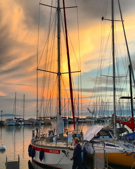 Boats in harbor at sunset