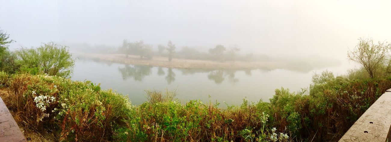 Made it to the Overlook, Colorado River looks Amazing with the Fog✨ Peaceful View Beauty In Nature Fun With Filters Panoramic View Panoramic Photography Having Fun Me Alone On A Walk Enjoying The View IPhone Photography Foggy Landscape Colorado River Scenics - Nature Tranquil Scene No People Growth Outdoors