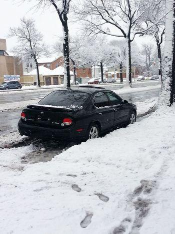 Nissan Maxima Snow