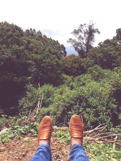Tree Human Leg Low Section One Person Human Body Part Nature Shoe Day Real People Growth Standing Outdoors Lifestyles Beauty In Nature Sky People Travel Destinations Travel Mountain Hills Nature Landscape Shoes Forest India