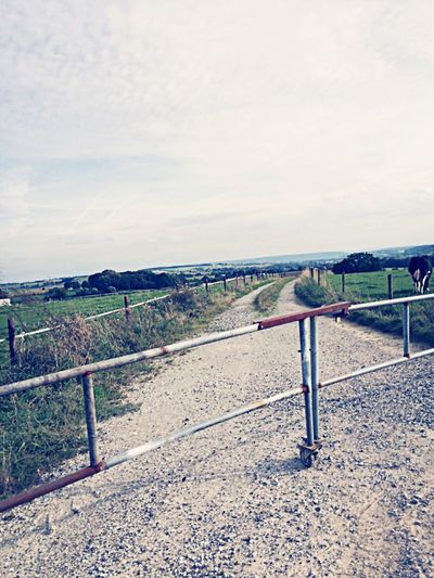 Beautiful view My Running View