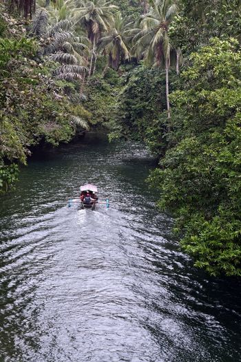 On the way to Green Canyon ... Bandung Shooter Indonesian Shooter Beauty In Nature Day Flowing Water Forest Growth Leisure Activity Lifestyles Men Motion Nature Nautical Vessel Outdoors People Plant Real People River Transportation Tree Two People Water Waterfront
