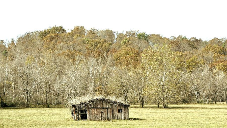 Old Barn Scenery