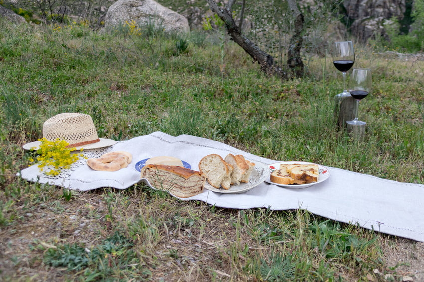 Picnic in the garden. Basket Bread Day Field Food Food And Drink Freshness Grass Healthy Eating Landscape Nature No People Outdoors Picnic Picnic Basket Picnic Blanket Plate Table Wineglass
