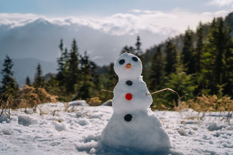 Close-up of snowman on mountain against trees and mountains during winter