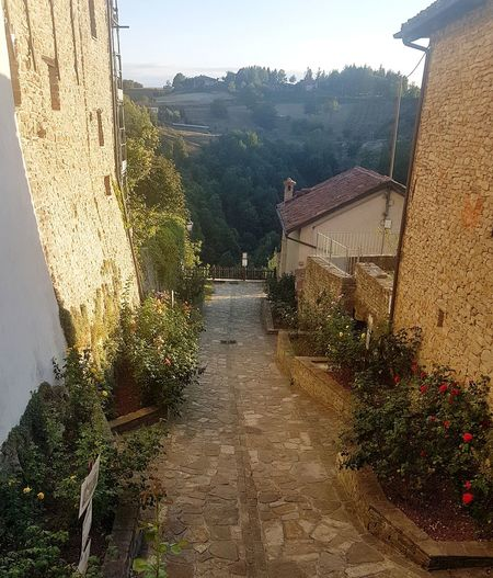 Architecture Built Structure Outdoors No People Day Sky Nature Tree Langhe Italy Langhe Alta Langa Old Buildings Village Flowers Garden Stone Walls