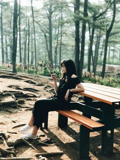 Full length of young woman using smart phone while sitting on picnic table in forest