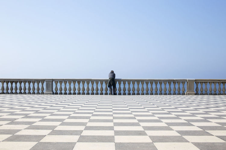 Rear view of man leaning on railing against clear sky