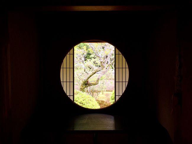 雲龍院 泉涌寺別院 京都 Kyoto Kyototravel Kyoto, Japan Travel Destinations Window Enjoying Life Beauty In Nature 3XSPUnity Relaxing Hello World Lifestyles Kyoto Garden Japanese Garden Relaxation