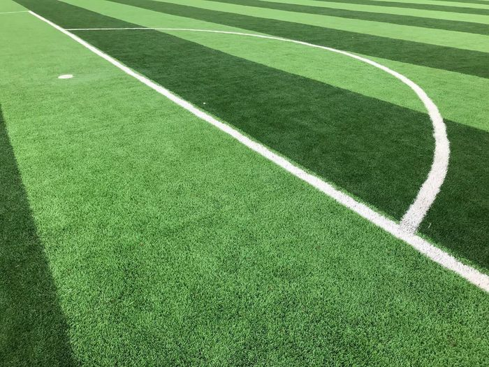 Green Passion Sport Grass Green Color Playing Field Plant Soccer Team Sport Stadium Soccer Field No People