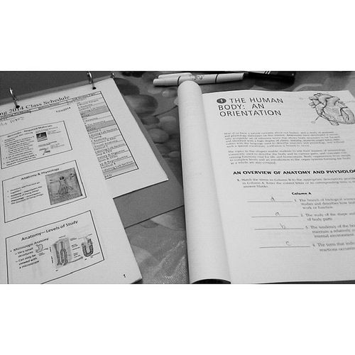 Tonight's Homework ? Biology160