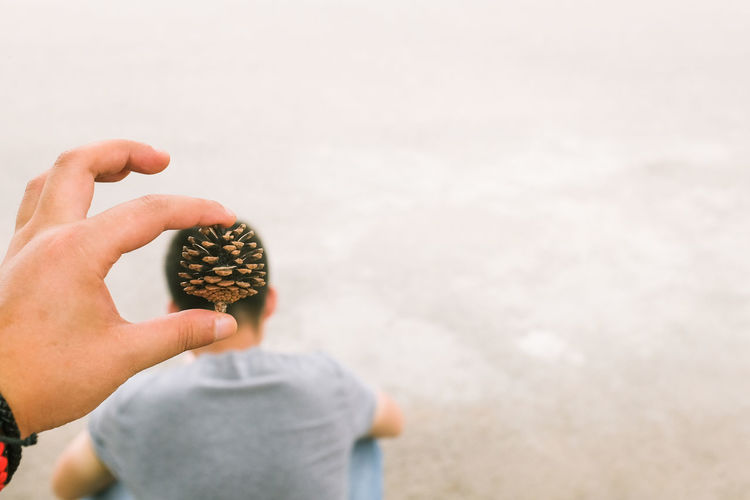 Optical Illusion Of Cropped Hand Holding Pine Cone On Man Head