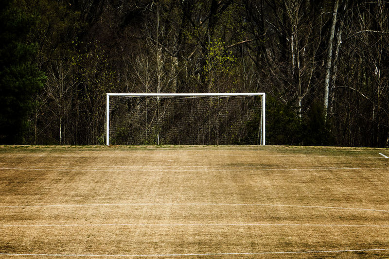 Brown field Soccer Team Sport Tree Sport Plant Soccer Field Football Sports Equipment Playing Field Soccer Goal Grass Competition Goal Post Goal Forest No People Empty Brown Grass WoodLand