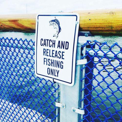 Fishing Fishing Dock Fishing Pier Fishing Life Fishing Spot Fishing Sign Sign Metal Sign Pier Pier 68