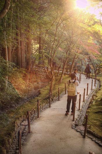 Streetphotography ELMARIT-M 28mm F2.8 京都 Fuji X-T1 FUJIFILM X-T1 Hello World Enjoying Life Taking Photos 撮る人