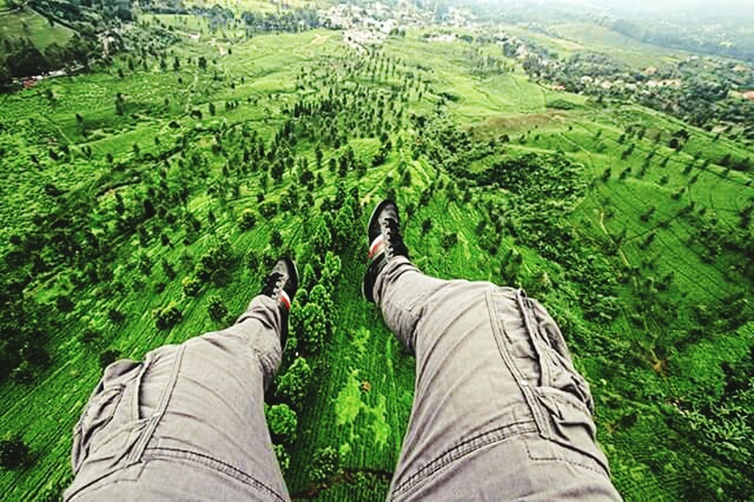 low section, person, personal perspective, landscape, green color, field, men, grass, lifestyles, leisure activity, shoe, growth, nature, tranquility, high angle view, beauty in nature, agriculture