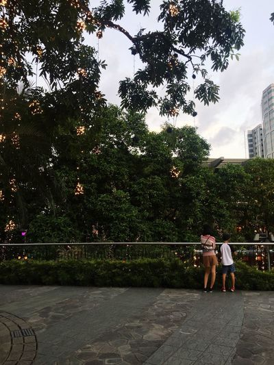 My fave subject Tree Two People Real People Full Length Women Outdoors Walking Built Structure Architecture Men City Standing Growth Lifestyles Building Exterior Togetherness Day Adult Sky People IPhoneography Beauty In Nature Freshness