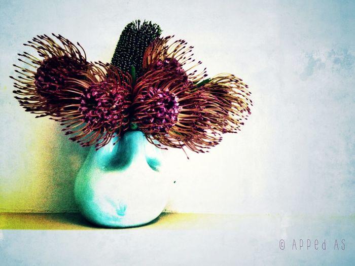 Vase of Flowers Flower