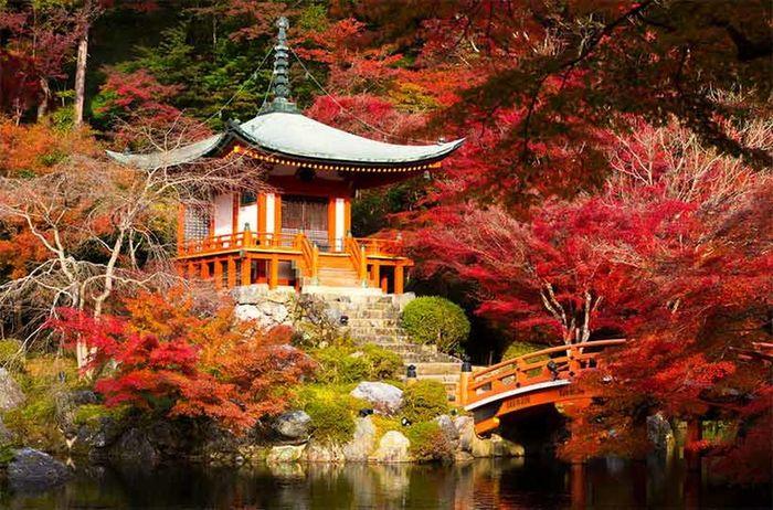 Kyoto,japan Photography Kyoto Japanese Temple