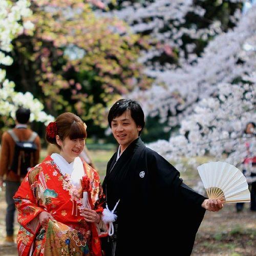 Love & Sakura? Kimono Traditional Love Sakura japan tokyo cherryblossom wedding newlyweds wedding nippon