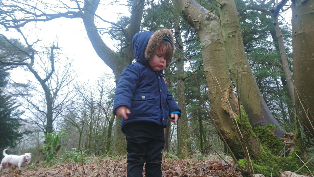 tree, childhood, one person, casual clothing, real people, forest, leisure activity, lifestyles, elementary age, full length, tree trunk, playing, outdoors, day, nature, boys, standing, hooded shirt, cute, warm clothing, pacifier, cold temperature, branch, people