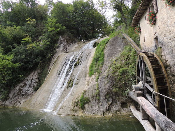 Molinetto Della Croda Beauty In Nature Day Forest Long Exposure Motion Nature No People Outdoors River Scenics Tree Water Waterfall Watermills