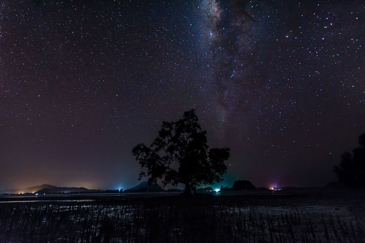 So far away Night Sky Landscape Scenery Galaxy Milkyway Stars Space Astronomy Astrophotography Tree Silhouette Universe Long Exposure Sony Alpha Sony A6000 Sonyphotography Sonyimages Travel Johor Malaysia ASIA No People Alphauniverse