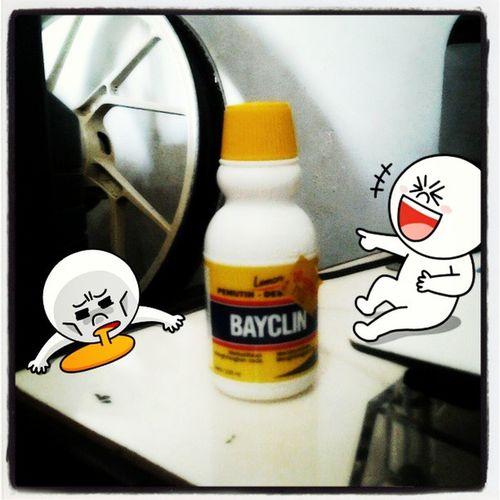 Bored Poison DontTryAtHome MyRoom Yogyakarta