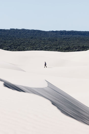 A lone person walks along the Stockton Sand Dunes Adventures Australia Australia Lifestyle Australia Travel EyeEmNewHere Leading Lines The Week On EyeEm Adventure Arid Climate Beauty In Nature Day Desert Landscape Layers One Man Only One Person Outdoors Real People Sand Dune Walking Walking Alone... Lost In The Landscape Perspectives On Nature Be. Ready. An Eye For Travel Go Higher The Great Outdoors - 2018 EyeEm Awards Summer Road Tripping The Traveler - 2018 EyeEm Awards The Creative - 2018 EyeEm Awards A New Beginning A New Perspective On Life Capture Tomorrow