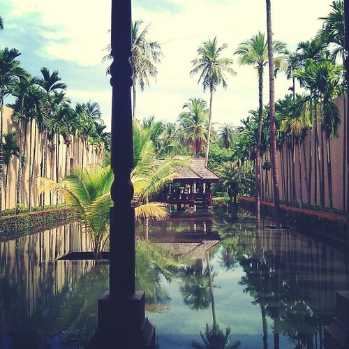 Oasis of tranquility. Langkawi,Malaysia,December 2012. Around The World Paradise