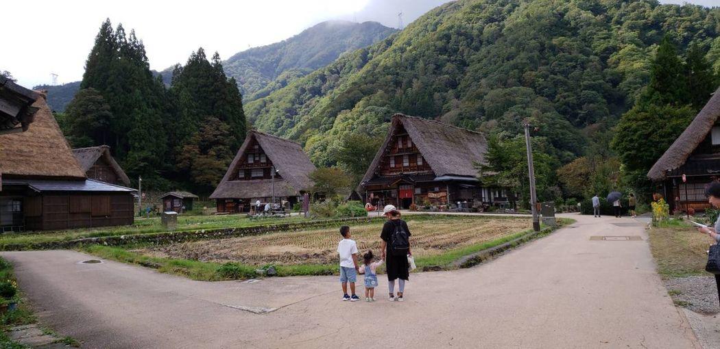 世界遺産 富山県 五箇山 Architecture Plant Built Structure Tree Building Exterior Real People Building