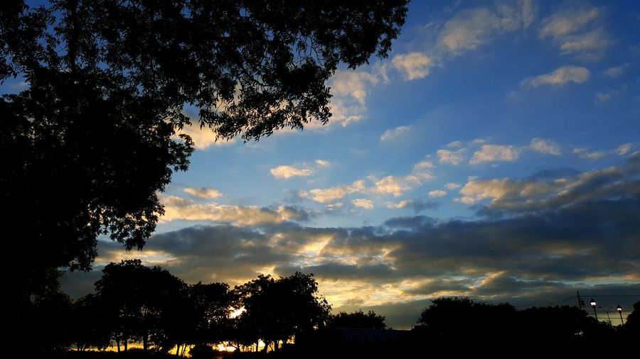 Relaxing Enjoying Life Check This Out Texas Skies Sunset Taking Photos Hello World Nature Nature_perfection Amateurphotography Beginnerphotographer Startofsomethingnew Hobby Stilllearning Trees Shadows Backlight Natural Beauty Natural Lighting