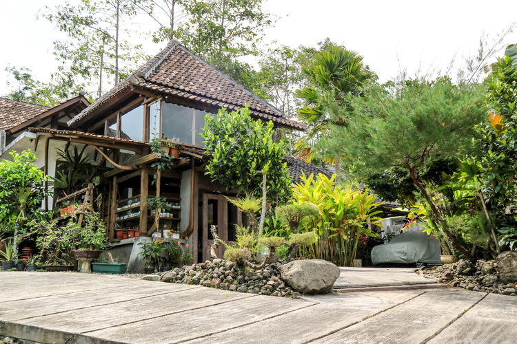 Kampung Lumbung, Malang, Indonesia INDONESIA Malang Architecture Building Building Exterior Built Structure Cottage Day Green Color Growth House Kampunglumbung Nature No People Outdoors Place Of Worship Plant Religion Roof Sky Spirituality Tree Wood - Material