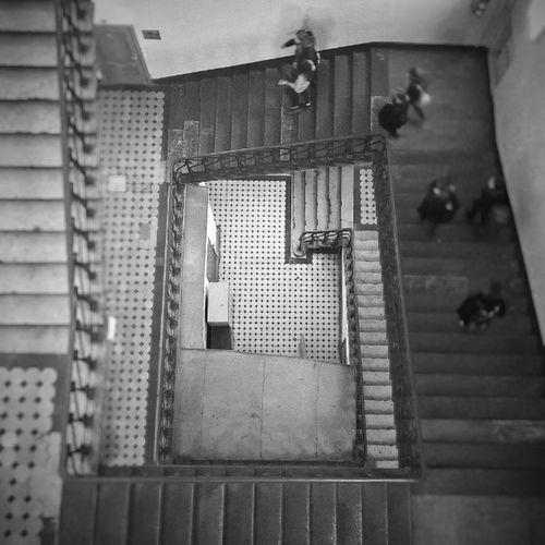 Продолжаем виртуальную экскурсию по журфакмгу Lategram Moscow Msu Ladders Theworldneedsmorespiralstaircases