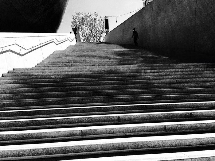 외로움 도시 쓸쓸함 차가움 동대문문화역사공원 Staircase Architecture Steps And Staircases Built Structure The Way Forward Direction No People First Eyeem Photo EyeEmNewHere Visual Creativity Summer Exploratorium Summer Exploratorium Visual Creativity EyeEmNewHere EyeEmNewHere Visual Creativity Summer Exploratorium Adventures In The City
