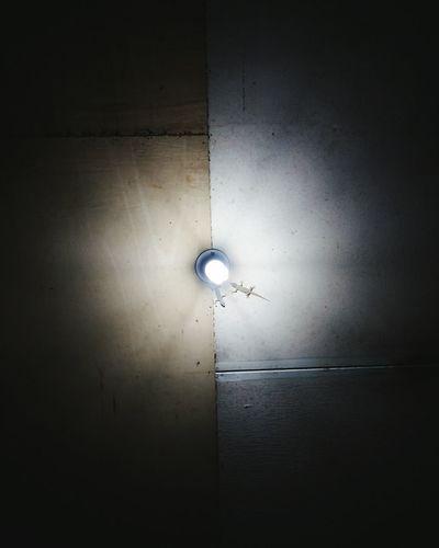 Light Lizards Lizard Love Low Light Ceiling Lightbulb Subtlelight Perspective Interior Views Mobile Photography