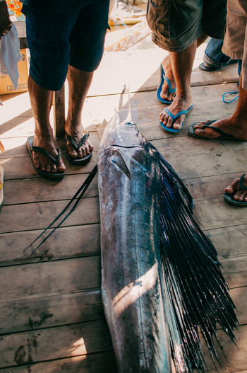 Real People Low Section Men Human Leg Human Body Part People Body Part Fish Lifestyles Vertebrate Day High Angle View Flooring Leisure Activity Occupation Indoors  Incidental People Human Foot Fishing Industry Beach Water Nature Fishing Fine Art Photography