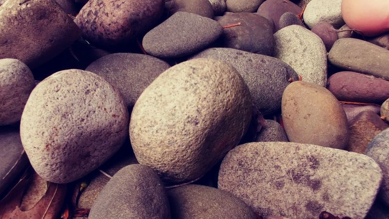 Dragon Egg Pebble Large Group Of Objects Stone - Object Abundance Rock - Object Backgrounds Group Of Objects Arrangement Extreme Close Up