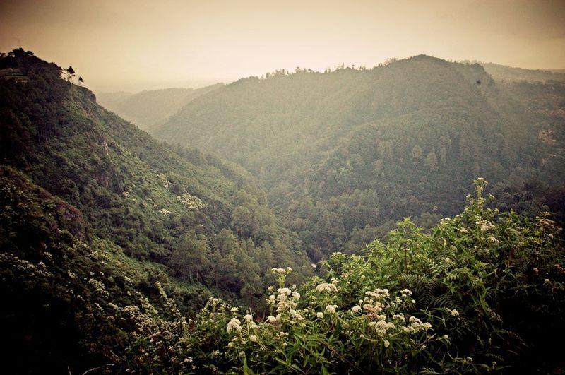 kordon II valley