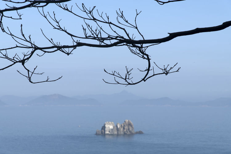 seascape of Somaemuldo Island in the sea of Tongyeong, Gyeongnam, South Korea. Taken with Nikon d850 and Nikon 24-120mm Nature's Beauty!! Tranquil Tranquility Beauty Of Nature... Branch Bright Day Calm Seas Calmness Of Sea Horizon Over Sea Horizon Over Water Island Sea Rock Sea View Seascape Tranquil Scene Tranquility Scene
