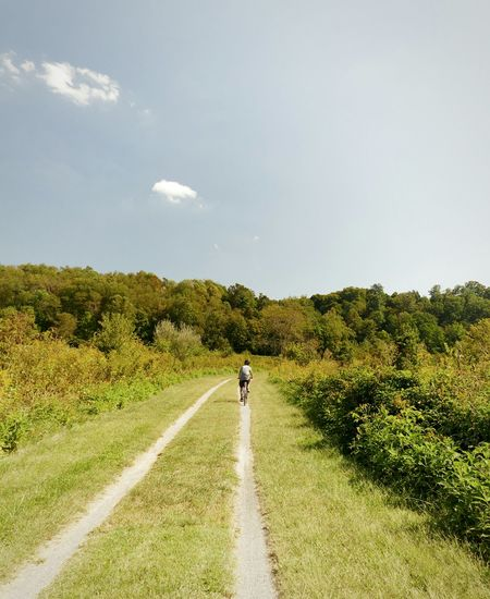Rear view of man walking on road amidst trees against sky
