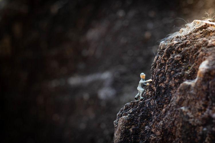 Close-up of a rock